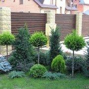 Образ Вашего сада. Устройство склонов и откосов. Террасирование