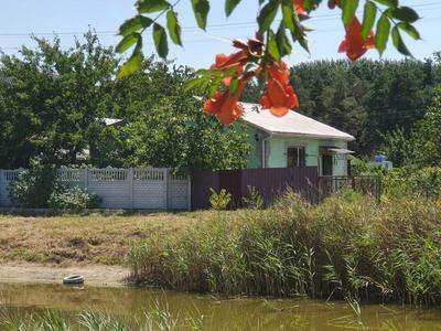 Продам Дом/Дачу у лісі на йодистому озері з пропискою! - main